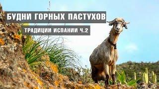 ОТДЫХ НА ТЕНЕРИФЕ | Будни горных пастухов. Традиции Испании ч.2  | КАНАРСКИЕ ОСТРОВА(Однажды, во время похода по горному хребту Анага, мы встретили местного жителя. И он любезно разрешил провес..., 2015-04-08T15:00:00.000Z)