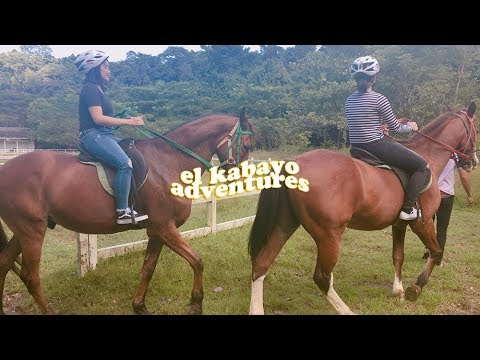 let's go horseback riding, a vlog 🐎