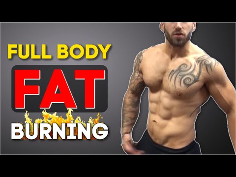 15 Minute Fat Burning Full Body Workout (LOSE WEIGHT FAST)