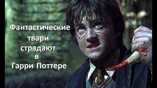 Фантастические твари страдают в Гарре Поттере
