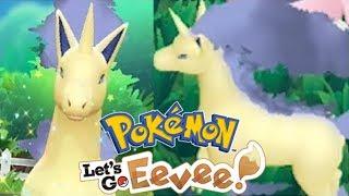 KUCE Z BRONKSU, CZYLI SHINY HUNTING NA PONYTE! - Pokemon Let's Go Eevee - Na żywo