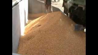 Зерносушилка на дровах, 3,5 т/ч по кукурузе(, 2012-10-22T15:50:52.000Z)
