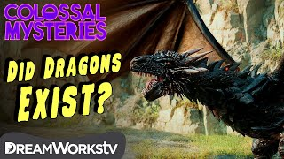 Did Dragons Ever Exist? | COLOSSAL MYSTERIES