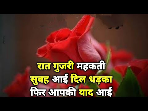 Raat Gujri Phir Mehkati Subha Aayi Dil Dharka... | Good Morning Shayari | Good Morning Messege