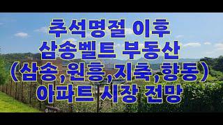 추석명절이후 삼송벨트(삼송,원흥,지축,향동) 부동산 시…