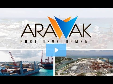 Case Study: Arawak Port Development