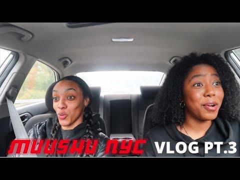 Download MuuTube Vlog Pt  3