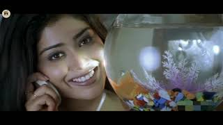 Tarun, Shriya Saran And Sunil Super Hit Full HD Romantic Comedy Movie | 2020 Movies | Home Theatre