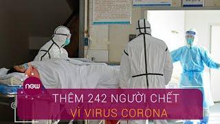 Cập nhật 13/2: Thêm 242 người chết vì virus Corona | VTC Now