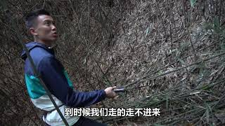 欢子TV:农村小伙带你看看大山里的生活,让人羡慕又嫉妒 【欢子TV】