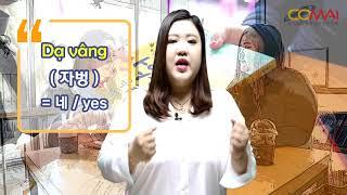#12 베트남어 배우기 11 : 당신은 ( )을 가지고 있어요?