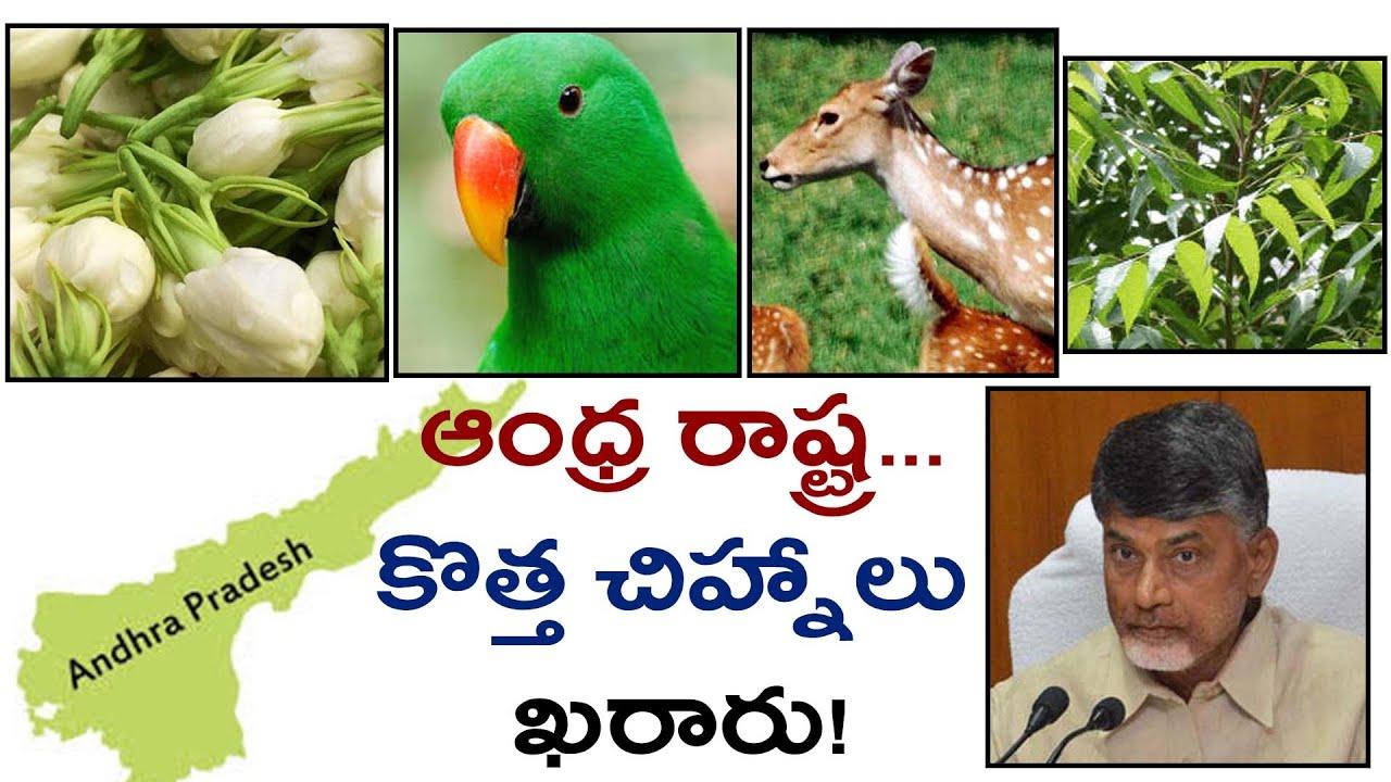National Symbols Of India Pdf