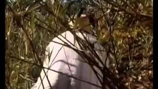 Baixar Homem cagando no mato