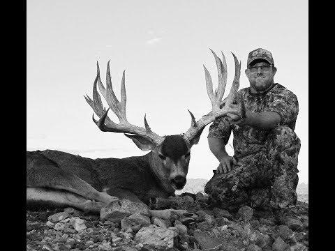 Chad Roberts 295 inch Arizona buck