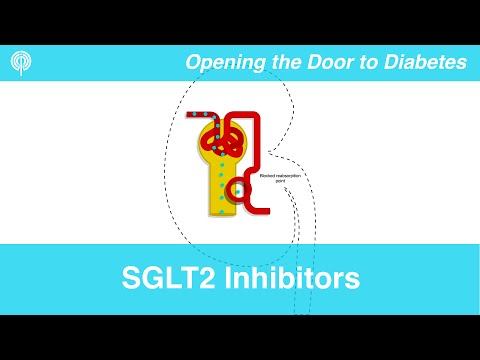 Overview of SGLT2 Inhibitors