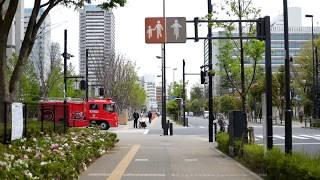 My Waseda Hangouts - Fia thumbnail