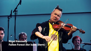 "Nigel Kennedy feat. Deutsches Kammerorchester Berlin - Fallen Forest (from the new album ""My World"")"