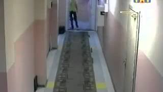 Венцеслав выпустил пар (Video Stuff)