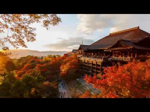 3 HOURS Japanese Relaxation Music for Stress Relief and Healing