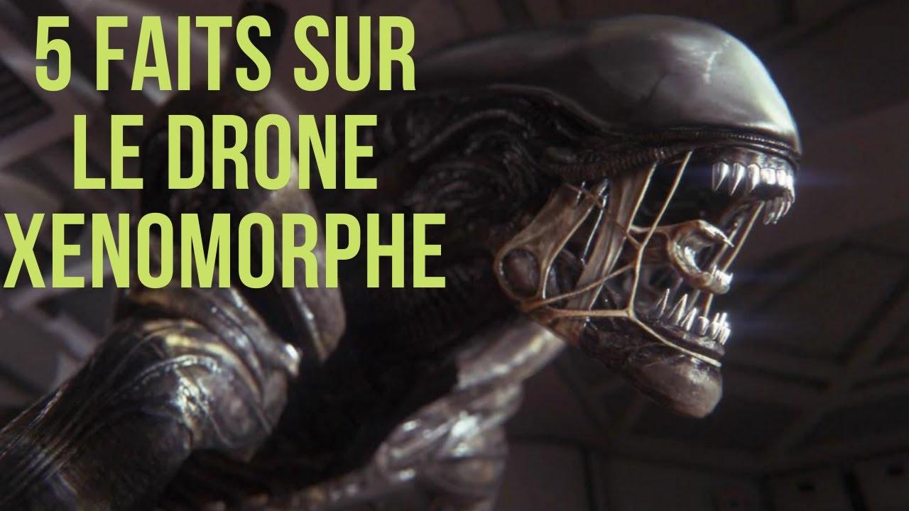 Download 5 FAITS SUR LE DRONE XENOMORPHE #Xenomorph #AliensFireteam