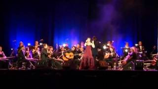 Baixar Joana Amendoeira - Orquestra do Algarve - Saudades do Futuro - (Fado Sereno)