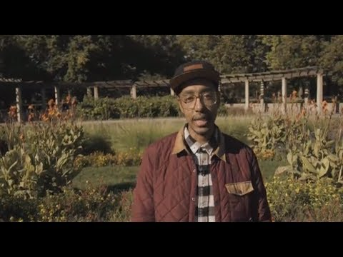 ODDISEE - OWN APPEAL (Official Video)