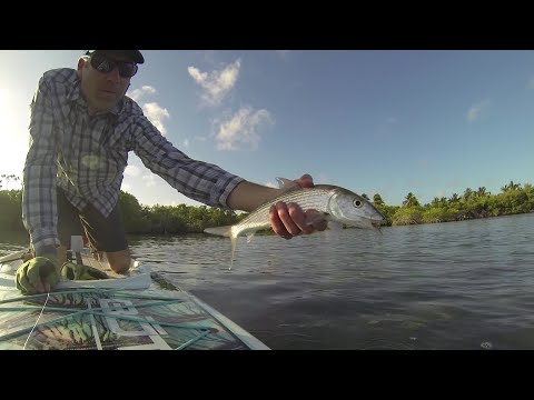 Beginners Guide To Fly Fishing Tropical Saltwater Flats - Cuba, Bahamas, Belize, Christmas Island, +