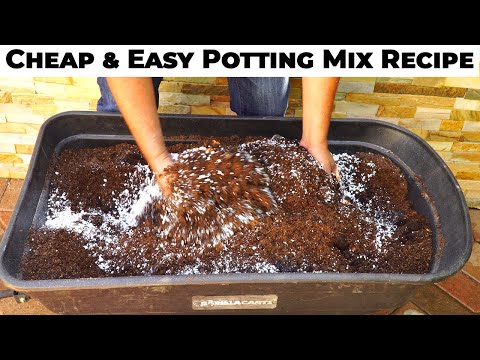 Potting Mix Vs Soil Ez