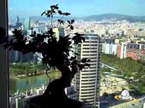 Review: Hilton Diagonal Mar, Barcelona