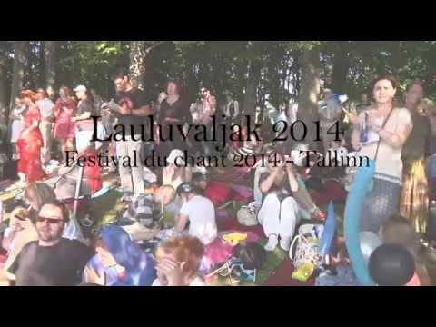 Autour d'Andrus Kivirähk / La fête du Chant à Tallinn / Juillet 2014