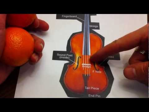Renaissance Design - viola, viol, violin, the origin of the F-hole
