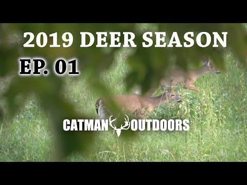 2019 Deer Season, Ep. 01 - Hunting A Bachelor Group Of Bucks