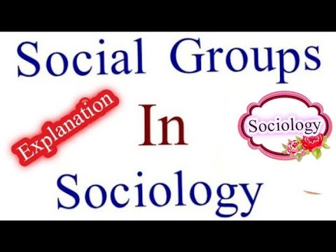What is Social Groups and all types of Social Groups.
