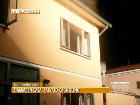 PADOVA TG - 27/06/2015 - IN BREVE LE NOTIZIE DEL TERRITORIO