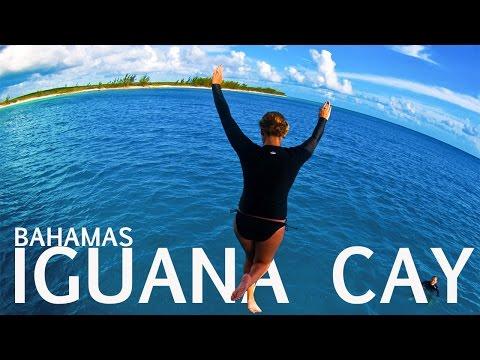 Discover The Bahamas  || Lizard Island