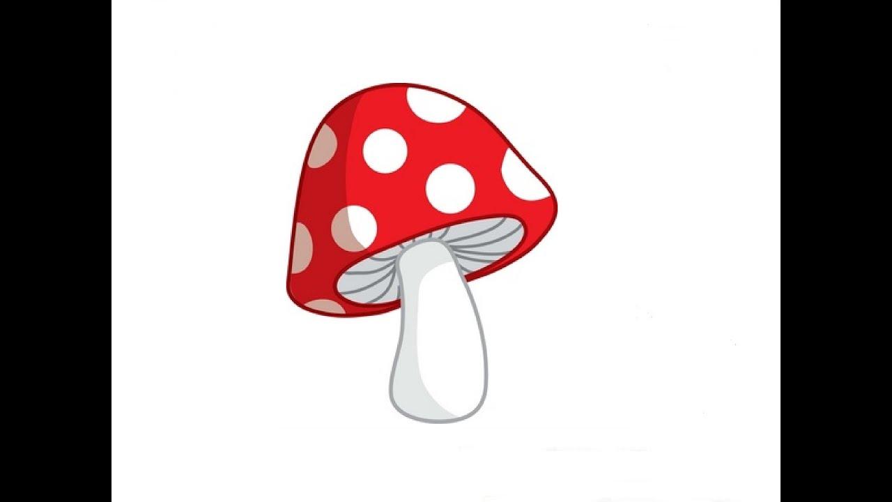 картинка гриб подберёзовик для детей