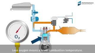 Exhaust gas recirculation (EGR) mąde easy