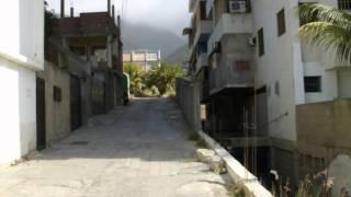 Palo de Arco Homenaje a Armando Reveron. En Vivo