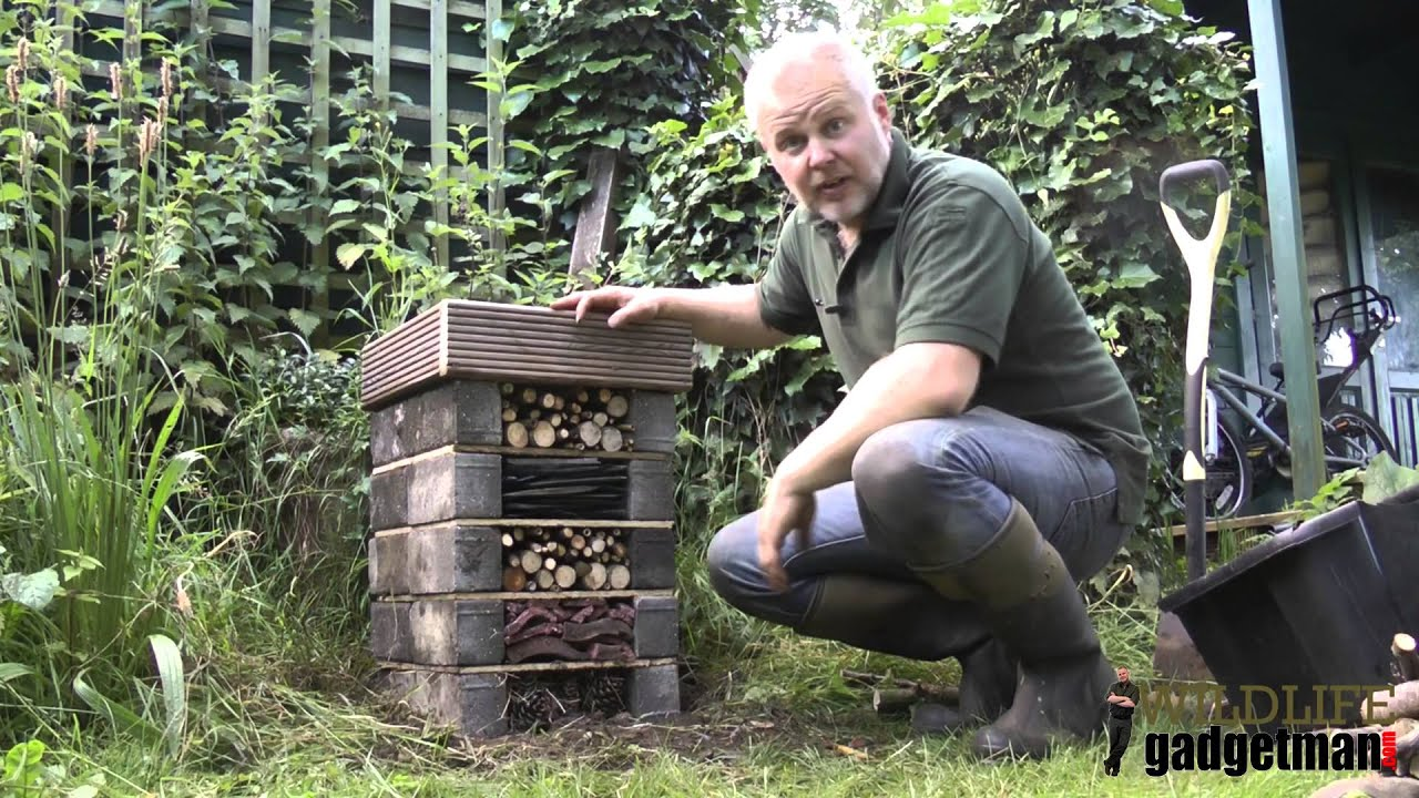 How To Build A Bug Hotel Youtube