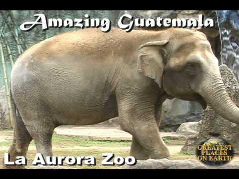 La Aurora Zoo in Guatemala City