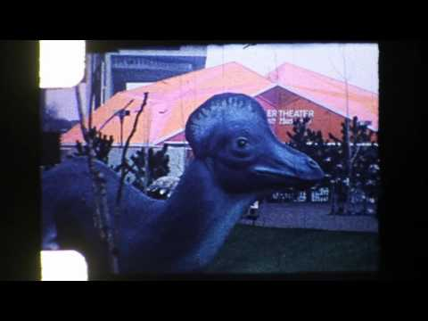 8mm Home Movies: 1964 / 1965 New York World