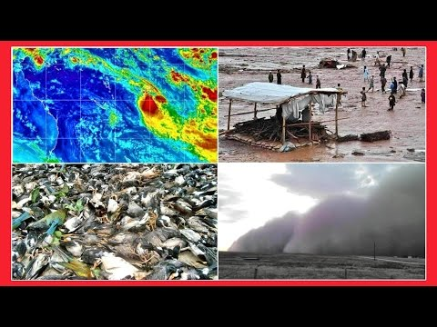DUSTSTORM & DROUGHT TEXAS, FLOODS FIJI & PAKISTAN, HEATWAVE INDIA | 8th April 2016