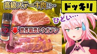 【2段ドッキリ】辛くても味が分かるらしいので最高級肉を世界一辛い唐辛子に漬け込んでみたww
