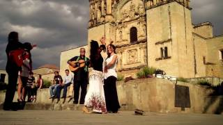 Sevillanes -  La Catedral Sta. Domingo - Cd. Oaxaca 2014