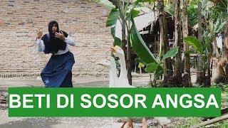 Gambar cover BETI DI SOSOR ANGSA