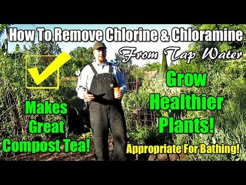 How To Neutralize / Remove Chlorine & Chloramines From Tap Water Using Vitamin C Powder