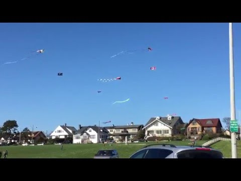 kite-flying-at-clover-point-victoria-bc-|-gingerbread-cottage