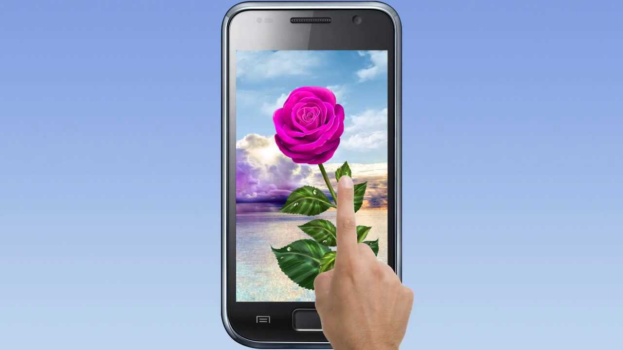 Rose Magic Touch Live Wallpaper Youtube