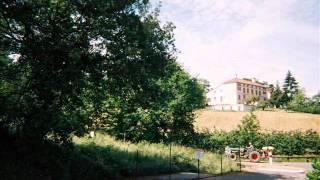 St Germain - Mignonne