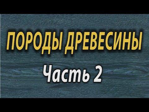 Породы древесины ТиП СС  Породы древесины 2 ТиП СС